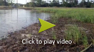 Wetlands Destroyed by Stacking Mats video